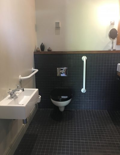 Image - accessible bathroom in hotel room with two fixed handrails