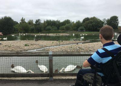 Image - Christian enjoying the birds at Swan Lake
